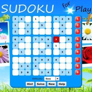 PlayBook sudoku