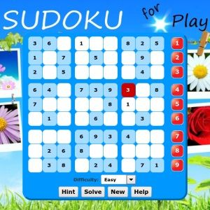 PlayBook sudoku
