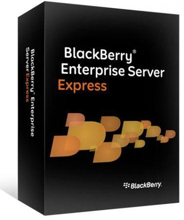 RIM annuncia il server BES Express per IBM Lotus Domino