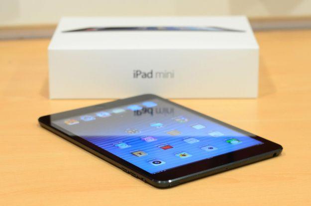 iPad Mini Retina schermo della discordia