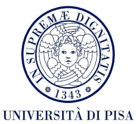L'Università di Pisa organizza un corso Sviluppo di Applicazioni per iOS