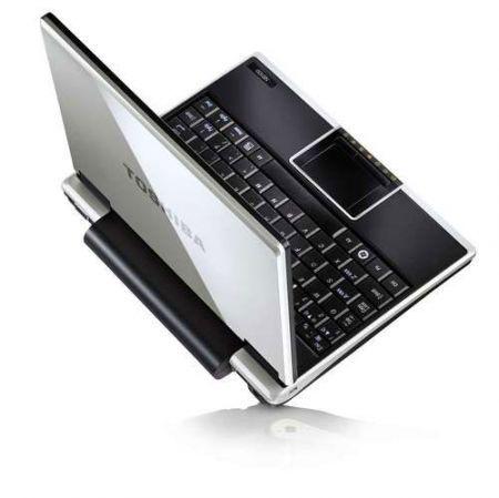 Toshiba NB100 netbook a basso prezzo