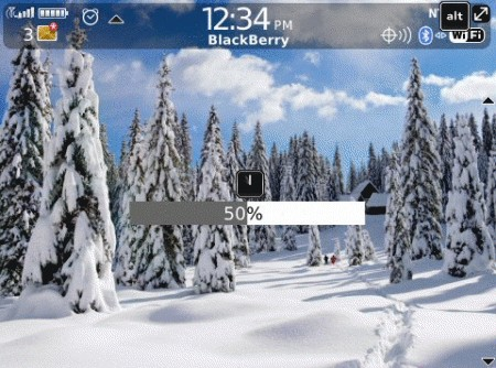 Winter Wonderland: Tema per BlackBerry Bold 9700