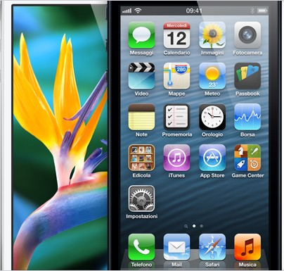 iphone5-display-ipnews
