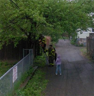 Pompieri salvano un gattino
